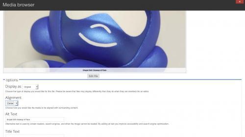 Media Module - Browser - My Files Tab - Adjust Display Settings