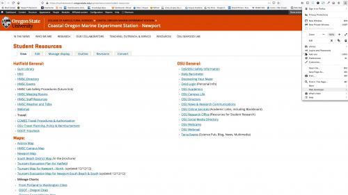 Monsido - Fix Links - Go to Web Developer Tools