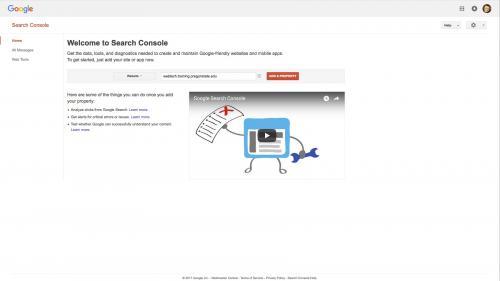 Metatag - Site-Verification - Add Website to Verify