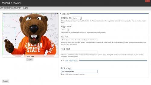 Media Module - Browser - Library Tab - Adjust Display Settings