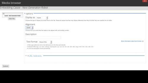 Media Module - Browser - Web Tab - Adjust Settings