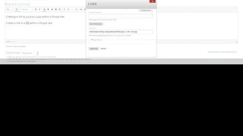 Linkit - Internal Link - File Link - File Path Inserted