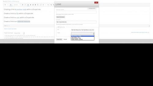 Linkit - Link Options - Set Target New Tab