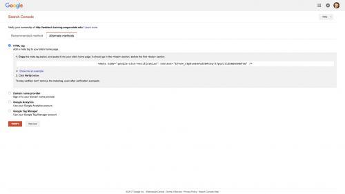 Metatag - Site-Verification - Select Metatag Option