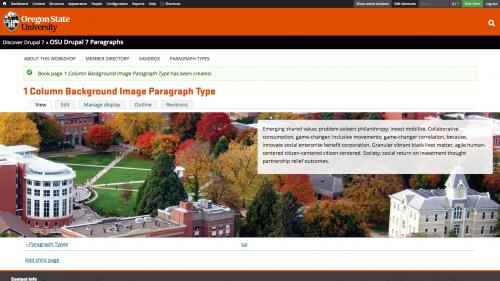 Using Paragraphs - 1 Column With Background - Completed