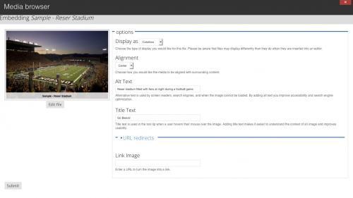 Media Module - Browser - Upload Tab - Display Options Adjusted