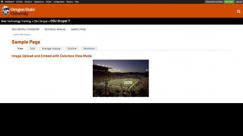 Media Module - Browser - Upload Tab - Image Embedded - Hover on Image