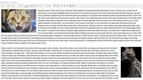 D7 - Working with Content - Text Editor - Media - Completed Text Editor Embed