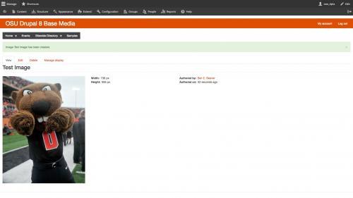 Drupal 8 - Media - Image Media Type - Completed Test Image