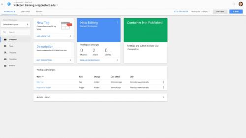 Google Tag Manager - Configure Container - Click Overview Link