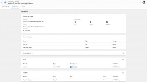 Google Tag Manager - Configure Container - Container Version Summary