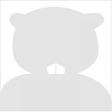 default profile image - benny beaver silhouette